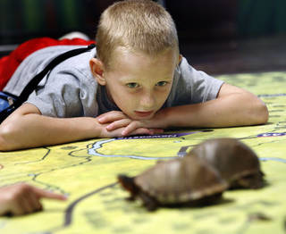 Eli Moulton watches turtles as naturalist Kathy Furneaux talks about them at the Discovery Cove Nature Center at Lake Thunderbird. OKLAHOMAN ARCHIVES STEVE SISNEY