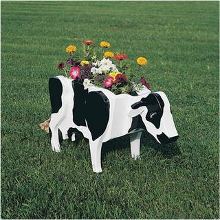 Build your own cow planter and enjoy its appeal for potted plants and flowers. PHOTO PROVIDED