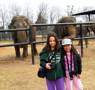 Cricket Kaya, left, and Prairie Kei Kaya pose in front of the elephants kept at the Endangered Ark Foundation in Hugo. PHOTO PROVIDED