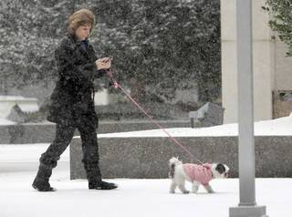 An Oklahoma City resident and her dog walk through a heavy snowfall in downtown Oklahoma City, OK, Friday, December 28, 2012, By Paul Hellstern