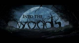 """Cinderella, Rapunzel, Jack and the Beanstalk, Red Riding Hood and a witch. You name it: almost every fairy tale possible can be seen in Walt Disney's production of James Lapine's """"Into the Woods."""""""