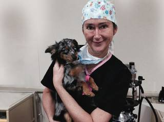 "Dr. Lesa Staubus holds a patient at the OSU Center for Veterinary Health Sciences. Staubus hosts a weekly short series on KOSU called ""Vet Med Moment."" Photo provided by University Marketing, OSU"
