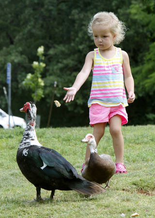 Maggie Duran, 3, tries to feed the birds at Edmond's E.C. Hafer Park during the Fourth of July holiday weekend. PHOTO BY PAUL HELLSTERN, THE OKLAHOMAN PAUL HELLSTERN -