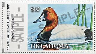 The 2014-15 duck stamp features the work of artist Shea Meyer of Stratford. Photo provided