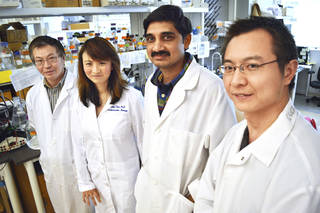 Scientists and researchers Yunzhou Dong, Hong Chen, Satish Pasula and Xiaofeng Cai made a recent discovery that could help improve cancer therapy. Photo by Jaclyn Cosgrove, The Oklahoman