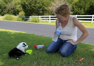 Landscaper Heather Parrott, owner of Neighborhood Gardener, takes a water break with her puppy, Sophia, while working on the landscaping at a housing development in Edmond. Parrott says this year's heat is not as bad as last year's because it came on gradually, allowing her body to acclimate to it. AP PHOTO