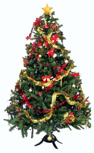 How did the tradition of the Christmas tree start?