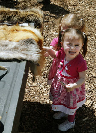 Three- year- old twins Cecily Allen, front, and Clara Allen feel the fur of a fox during Earth Fest event at Martin Nature Park. Photo by Paul Hellstern, The Oklahoman PAUL HELLSTERN - Oklahoman