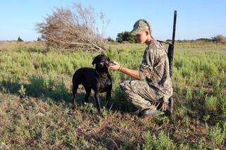 Dove season opens Sept. 1 Oklahoma, kicking off the hunting seasons. State wildlife officials estimate there are about 50,000 dove hunters in the state who harvest about 1 million birds each year. - Photo by Wade Free