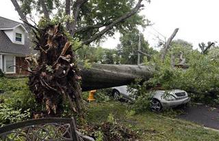 A car is crushed by an uprooted tree after strong winds hit the area Wednesday, July 24. 2013, in Tulsa, Okla. Powerful thunderstorms swept through parts of Oklahoma late Tuesday and early Wednesday, knocking out power to tens of thousands of homes and businesses and setting off fires caused by lightning strikes. (AP Photo/Tulsa World, Tom Gilbert)