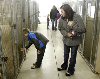 Shawna Scrag and her son, Tanner Sweeney, 10, look at adoptable dogs.