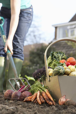 Dr. Oz suggests using natural pesticides for your vegetable garden. Martin Poole