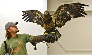 Harley Coleman, an aviary assistant at the Grey Snow Eagle House, has an eagle spread its wings during a presentation for students Tuesday in the Indian Education Program in the Putnam City School District. Photo by M. Tim Blake, for The Oklahoman M. Tim Blake