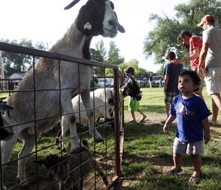 Zeb Umdenstock, 2, of Edmond, checks out a large goat searching for food at a picnic celebrating St. John the Baptist Catholic Church's 125th anniversary. Photo by K.T. King, The Oklahoman KT King -