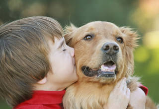 It has been proven that pets are a source of support and unconditional love for children. During and after divorce, when there is so much instability in a child's life, a beloved pet can be the bridge to sanity. (©istockphoto.com/sonyae)