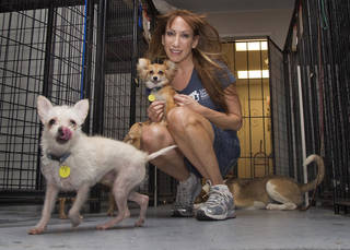 In this photo taken on Thursday, July 12, 2012, Jodi Polanski, founder and executive director of Lost Our Home Pet Foundation, poses with pets in Phoenix. Lost Our Home helps people facing foreclosure place their pets with other families or in foster environments until their owners can get them back. Lost Our Home Pet Foundation rescue and food bank relies primarily on fosters although it did open a small shelter in April. It has 35 to 40 animals in the shelter and 220 in foster homes and has placed over 2,000 animals in four years. (AP Photo/Matt York) ORG XMIT: NYLS963