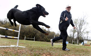 Henry, a black labrador and recent American Kennel Club national champ for agility, works with his owner Dennis Butler on Thursday, April 18, 2013 in Norman, Okla. Photo by Steve Sisney, The Oklahoman STEVE SISNEY - THE OKLAHOMAN