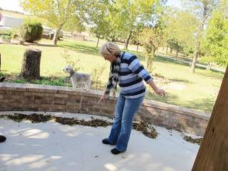 File photo - In this Oct. 24, 2013 photo, Prague, Okla. resident Mary Reneau, 70, points to the hairline cracks that have formed in the concrete of her patio that she says were caused by several earthquakes that have rumbled through her town in the past two years. (AP Photo/Justin Juozapavicius)