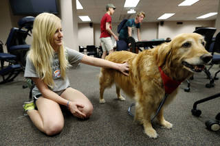 University of Oklahoma student Victoria Moss pets therapy dog Sunny while taking a break from studying for finals in the Bizzell Memorial Library. PHOTO BY STEVE SISNEY, THE OKLAHOMAN STEVE SISNEY