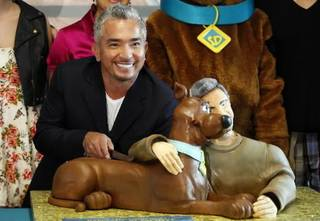 """Cesar Millan, dog behavior specialist and host of the television series """"The Dog Whisperer,"""" cuts his birthday cake while celebrating his 40th birthday with a Scooby-Doo cake at the East Valley Animal Shelter in Los Angeles on Tuesday Sept. 8,2009. AP Photo"""