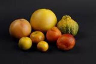 Back row from left, a tangelo, a pummelo and an ugli fruit. Front row from left, a Gold Nugget tangerine, a honey tangerine, a Meyer lemon, a Minneola Tangelo and a blood orange. Photo by Doug Hoke, The Oklahoman