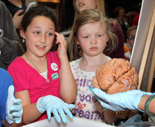 Lex Pascariello, left, and Ava Greene eye a human brain Sunday at the Sam Noble Oklahoma Museum of Natural History's Science in Action and Object Identification Day. PHOTO BY LYNETTE LOBBAN, FOR THE OKLAHOMAN Lynette Lobban