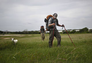 "Phillip Aldrich, front, and Kyle Townsend walk with Wrigley the goat walk in a field along Wilshire Road in Oklahoma City, Tuesday, Jan. 8, 2012. The groups is walking with a a goat to ""Crack the Curse"" of the Chicago Cubs and to raise money for Fred Hutchinson Cancer Research Center by walking 19,000 miles. Photo by Sarah Phipps, The Oklahoman."