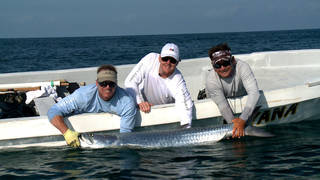 Former OSU and current Cleveland Browns quarterback Brandon Weeden (center) caught this tarpon on a trip off Mexico's Isla Holbox for Gridiron Outdoors. Mike Pawlawski (left) is the host and producer for the television show on The Outdoor Channel. Alejandro Vega (right) was their fishing guide. Photo provided