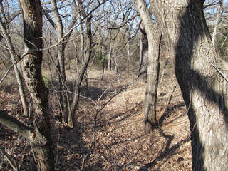 This photo shows a remnant of the McGranahan Portion of the Chisholm Trail Roadbed, recently entered on the National Register of Historic Places. The roadbed, about 12 feet wide, carved 19 to 22 inches into the ground, can be seen between the trees in the center of the photo. - PROVIDED BY STATE HISTORIC PRESE