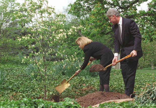 In this photo, taken April 23, 1995, President Bill Clinton and First Lady Hillary Rodham Clinton plant a tree at the White House in honor of Oklahoma City bombing victims. Photo provided by the Clinton Presidential Library