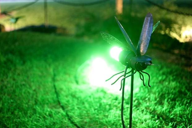 "As part of Oklahoma Contemporary Art Center's ""Bright Golden Haze: Reflections,"" the Myriad Botanical Gardens is showcasing this summer Nathan Pratt's ""Fireflies"" illuminating sculptural installation. [Doug Hoke/The Oklahoman]"