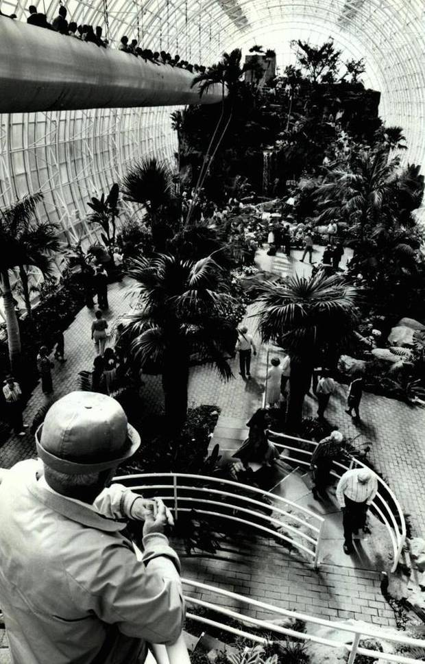 On March 25, 1988, Gilbert Fry of Spencer, as well as other guests were able to tour the Crystal Bridge in the Myriad Botanical Gardens in downtown Oklahoma City. [Photo by Roger Klock, The Oklahoman Archives]