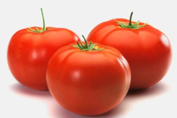 photo - Researchers have found that breeding tomatoes to ripen evenly and harvest easier has robbed those sumptuous ruby reds of their taste.