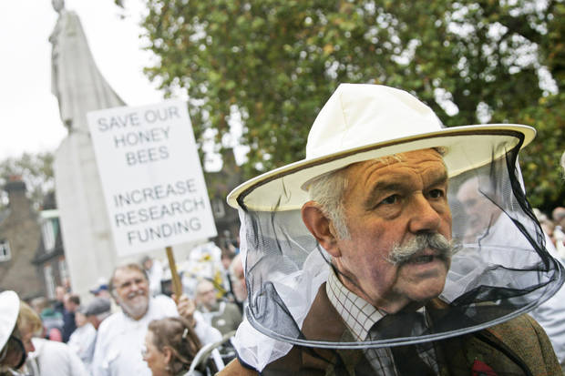 photo - British beekeepers protest Wednesday, seeking  increased research funding to protect bees. AP Photo