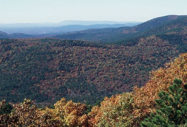 The 54-mile Talimena National Scenic Byway offers stunning views pretty much any time of year, but especially during fall. The drive from Talihina to Mena, Arkansas, meanders along the crest of Rich Mountain and Winding Stair Mountain in the Ouachita National Forest, offering numerous stupendous vistas and turnoffs. [The Oklahoman Archives]