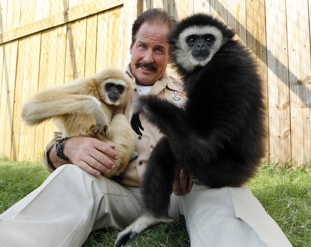 photo - Tiger Safari owner Bill Meadows holds his new gibbon apes Teeka, left, and Marley.