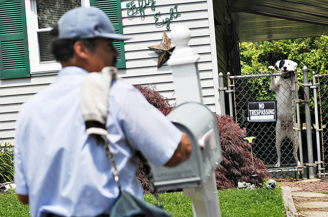 Letter carrier Victor Torres delivers mail to a home in Levittown Township, Pa. He has been bitten by dogs many times while working for the postal service. AP photo