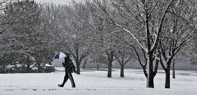 A pedestrian carries an umbrella while walking through the heavy snowfall in downtown Oklahoma City on Tuesday, Feb.12, 2013, in Oklahoma City, Okla. Photo by Chris Landsberger, The Oklahoman