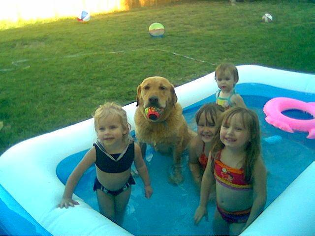 This is a picture of my daughter Olivia (2) and my neices, Emily (1), Kayla (6) and Abbey(4).  And of course one of our dogs, Buddy.  This is such a great picture because Buddy is always afraid of the water.  He runs when we turn on the hose.  I guess he just decided hewith the heat, enough is enough!<br/><b>Community Photo By:</b> Kelly & Jack Hignite<br/><b>Submitted By:</b> Kelly, Yukon