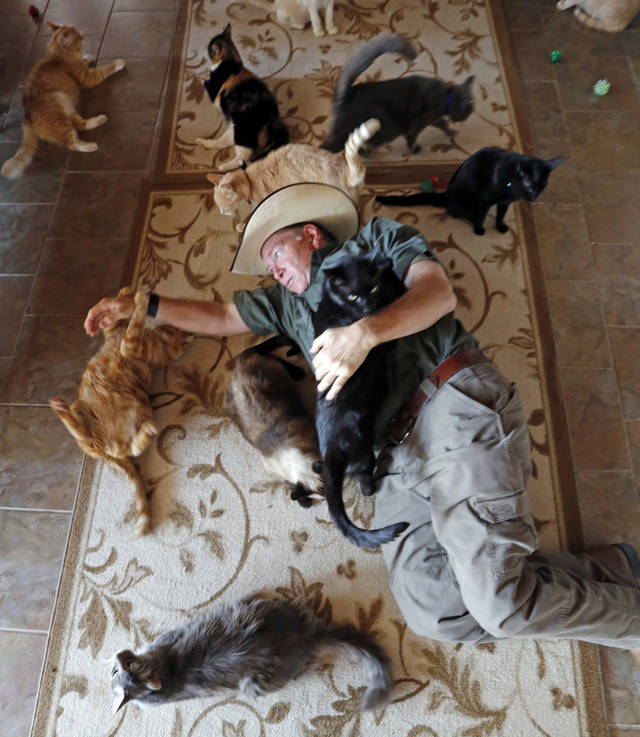 In this Aug. 29, 2013 photo, Leo Grillo plays with cats at his DELTA (Dedication & Everlasting Love to Animals) Rescue complex in Acton, Calif.  Nearly 35 years ago, Grillo thought he could get people to stop dumping dogs and cats in the forests and deserts of Southern California. After more than three decades, there is no end to the number of animals he finds discarded on the side of the road. Delta Rescue is now the largest no-kill, care-for-life sanctuary in the nation for abandoned pets, home to some 1,500 dogs, cats and horses with 50 employees, a state-of-the-art hospital with full-time veterinarian, and his own fire department. (AP Photo/Reed Saxon)