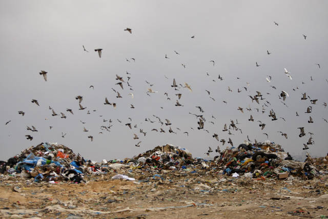 In this Monday, May 14, 2012 photo, birds fly over piles of garbage in the West Bank city of Ramallah. Trying to raise awareness to environment protection, Palestinian officials are encouraging thousands of children to collect compost, visit recycling centers and plant trees. The hope is that the young generation will learn good habits for the future, and maybe even teach their parents a thing or two about conservation. (AP Photo/Majdi Mohammed)