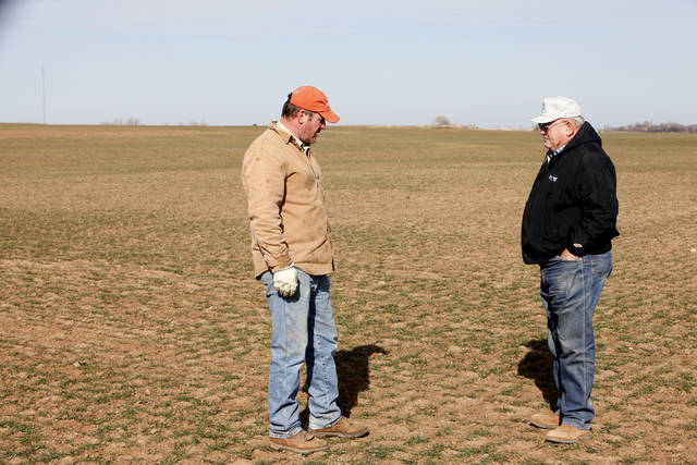 Harold Wooderson, right, looks over his drought stricken wheat field north of Blackwell with son Bruce Wooderson.  <strong>David McDaniel - The Oklahoman</strong>