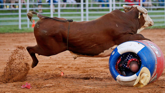 Shane Parli takes shelter as a bull charges his barrel during the LibertyFest Rodeo in Edmond, Okla., Saturday, June, 22, 2013.