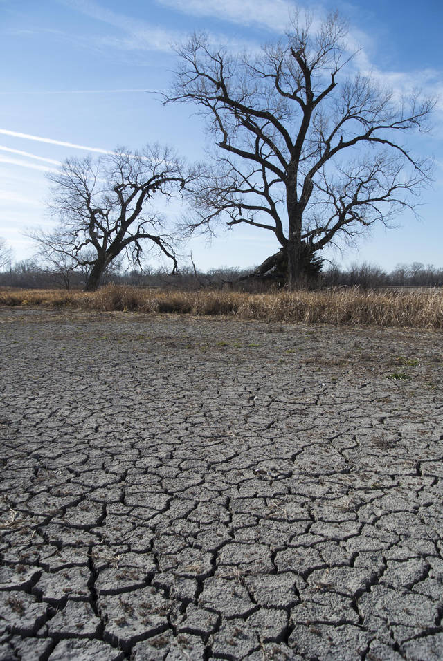 Cracks form in the bed of a dried lake, the outcome of drought in Waterloo, Neb., Tuesday, Nov. 20, 2012. A new report shows that the nation's worst drought in decades is getting worse again, ending an encouraging five-week run of improving conditions. The weekly U.S. Drought Monitor report shows that 60.1 percent of the continental U.S. was in some form of drought as of Tuesday. That's up from 58.8 percent the previous week. (AP Photo/Nati Harnik)