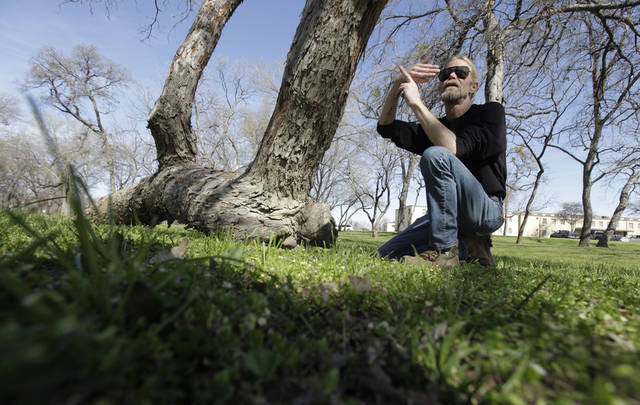 In this Feb. 23, 2012 photo, arborist Steve Houser talks about a Native American marker tree, left, in Dallas. The pecan tree, more than 300 years old, stands out from the others in a forested area of Dallas, a 25-foot segment of its trunk slightly bowed and running almost parallel to the ground before jutting high up into the sky. (AP Photo/LM Otero)