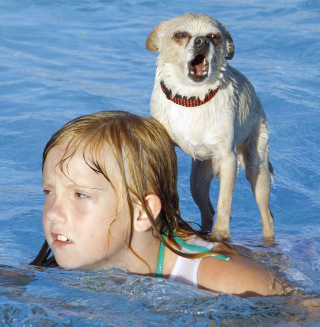 dog pool party on Labor Day, Monday, Sept. 6, 2010, in Midwest City, Okla.   Photo by Steve Sisney, The Oklahoman
