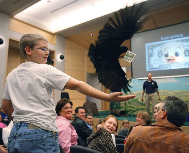 "A crow takes a dollar bill from Justin Harris, 12, of San Antonio during ""It's All About Birds"" featuring birds from the Sutton Avian Research Center at the Sam Noble Oklahoma Museum of Natural History on Tuesday, March 16, 2010, in Norman, Okla.   Photo by Steve Sisney, The Oklahoman"