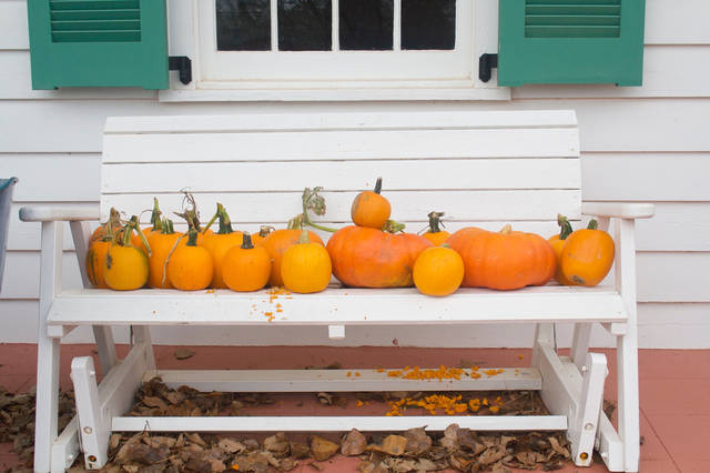 Smaller pumpkins are best for making pumpkin pie. PHOTO BY SHERREL JONES, THE OKLAHOMAN