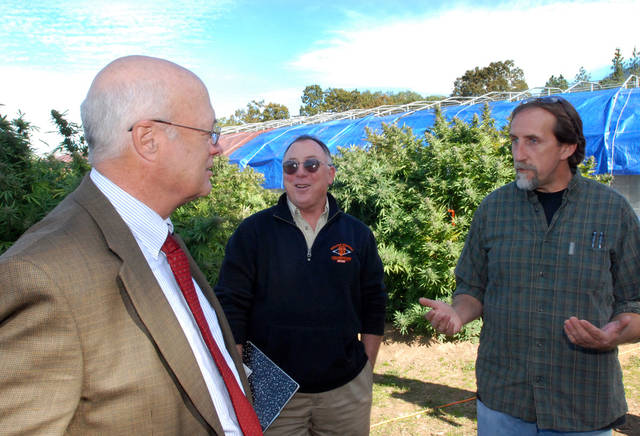   This Oct. 13, 2011 photo shows Sen. Alan Bates, D-Medford, left, and Rep Peter Buckley, D-Ashland, touring a medical marijuana farm in Jacksonville, Ore., with grower James Bowman. Supporters of legalizing marijuana in Oregon say they will take their case to the Legislature now that voters have turned down their Measure 80. (AP Photo/Jeff Barnard)  