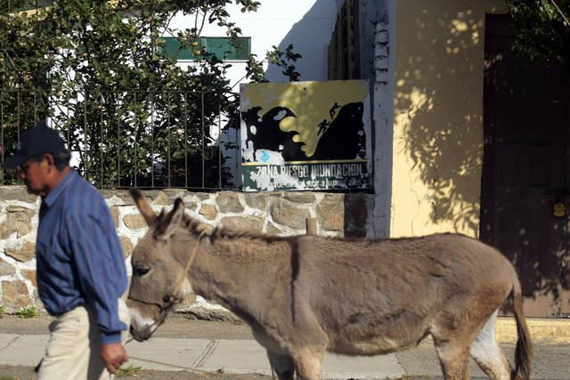 In this Nov. 29, 2012 photo, a man and his donkey walk past a tsunami warning sign in Navidad, Chile. The road to the town of Navidad (Christmas in Spanish) is lined by a forest of eucalyptus trees and wildflowers that grow around painted tsunami warning signs that urge residents to build their homes high or dash for higher ground in case of a quake. (AP Photo/Luis Hidalgo)